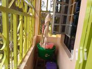 For Sale 3bedroomed Bungalow Ensuite Located At Muguga,Kiambu County | Houses & Apartments For Sale for sale in Nairobi, Nairobi Central