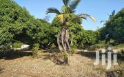 1/4 Acre Lamu Plots | Land & Plots For Sale for sale in Lamu, Hindi