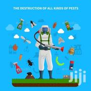 Fumigation Insects Professional | Cleaning Services for sale in Nairobi, Kitisuru