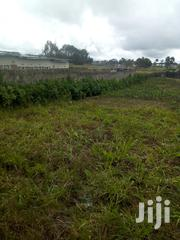 1/2 Acre With Houses For Rent On Sale | Land & Plots for Rent for sale in Nyandarua, Magumu