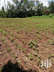 Clean Title Residential Land | Land & Plots For Sale for sale in Bungoma, Kimilili
