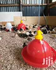 Automatic Bell Drinkers For Chicken | Farm Machinery & Equipment for sale in Nairobi, Utalii