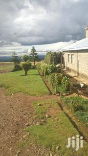 Narumoru 1/8 Plots | Land & Plots For Sale for sale in Nyeri, Kamakwa/Mukaro