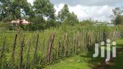 1/4 Plot With Title Racecourse | Land & Plots for Rent for sale in Uasin Gishu, Kapsoya