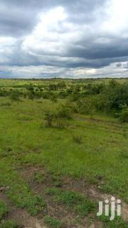Half An Acre For Sale In Thika,Munyu-gatuanyaga | Land & Plots For Sale for sale in Kiambu, Gatuanyaga