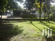 NYALI-3 BEDROOM BUNGALOW Sitted On 1 ACRE COMPOUND With MATURE TREES | Houses & Apartments For Rent for sale in Mombasa, Mkomani