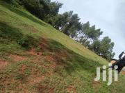 1 Acre Land For Sale In Nyamataro | Land & Plots For Sale for sale in Kisii, Kisii Central