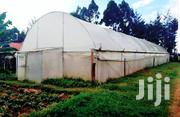 Lanet Greenhouse To Let | Commercial Property For Rent for sale in Nakuru, Lanet/Umoja