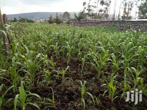 Land For Sale In Makao Kiti Nakuru