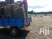 Freshly Cut Boma Rhodes Bales | Feeds, Supplements & Seeds for sale in Uasin Gishu, Ngeria