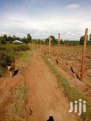 1 Acre Land For Rent(Agricultural Land For Lease) Nyanko -migori | Land & Plots for Rent for sale in Migori, Suna Central