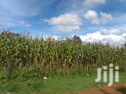 1.7 Acres for Sale Ngeria Eldoret | Land & Plots For Sale for sale in Uasin Gishu, Megun