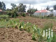Prime Quarter Acre for Sale at Destination | Land & Plots For Sale for sale in Nyandarua, Gatimu