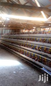 Quality Chicken Cages on Sale | Pet's Accessories for sale in Nairobi, Kasarani