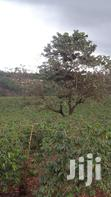 20 Acres of Land in Kirigiti | Land & Plots For Sale for sale in Waithaka, Nairobi, Kenya