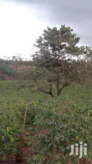 20 Acres of Land in Kirigiti | Land & Plots For Sale for sale in Nairobi, Waithaka