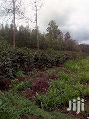 Kiambu Land | Land & Plots For Sale for sale in Kiambu, Ndumberi