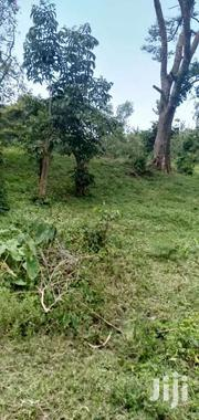 Two Acres Land In Bungoma Torofu | Land & Plots For Sale for sale in Bungoma, East Sang'Alo