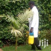 Pest Control In Kilimani, Kileleshwa, Lavington | Cleaning Services for sale in Nairobi, Kilimani