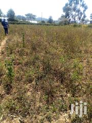 Half an Acre for Sale | Land & Plots For Sale for sale in Kiambu, Kikuyu