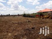 Eighth Acre Plot for Sale in Ngong, Kimuka | Land & Plots For Sale for sale in Kajiado, Ngong