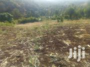 40x80ft Plots for Sale at Kenol Past Quarry.150mtrs From Muranga Road | Land & Plots For Sale for sale in Murang'a, Kimorori/Wempa
