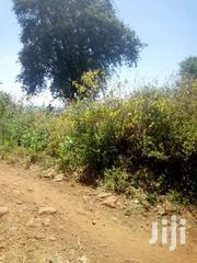 Quick Sale Of 200 Acres Farm Land In Mitunguu Touching River | Land & Plots For Sale for sale in Meru, Mitunguu