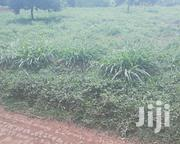 Quarter in Ugweri | Land & Plots For Sale for sale in Embu, Mbeti North