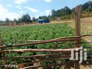 5 Acres; Ngorika | Land & Plots For Sale for sale in Nyandarua, Mirangine