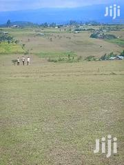 Prime Plots For Sale   Land & Plots For Sale for sale in Laikipia, Ngobit