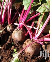 Fresh Beetroots From Karatina | Feeds, Supplements & Seeds for sale in Nyeri, Karatina Town