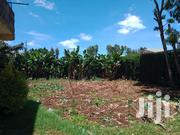 1/8 Acre on Sale Behind Wambugu Farm Nyeri | Land & Plots For Sale for sale in Nyeri, Gatitu/Muruguru