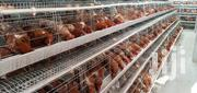 Poultry Cages | Farm Machinery & Equipment for sale in Nairobi, Kasarani