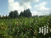 LAIKIPIA COUNTY , KWA WANJIKU CENTER 1 ACRE AT 850,000 | Land & Plots For Sale for sale in Laikipia, Marmanet