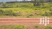 5acre Land on Sale at Wang'apala,5km Off Misambi Centre. | Land & Plots For Sale for sale in Homa Bay, Kabondo East