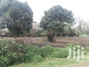 Two Eighths Prime Plots on Sale in Matasia | Land & Plots For Sale for sale in Kajiado, Ngong
