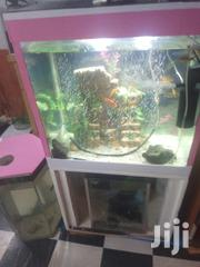 Aquarium for Sale | Pet's Accessories for sale in Kiambu, Muchatha