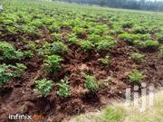 Land For LEASE | Land & Plots for Rent for sale in Nyandarua, Mirangine