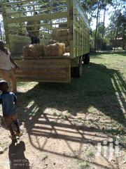 HAY (Boma Rhodes)   Feeds, Supplements & Seeds for sale in Bungoma, Bokoli