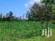 6 Acres Land | Land & Plots For Sale for sale in Kitui, Kyangwithya East