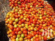 Farm Fresh Tomatoes | Meals & Drinks for sale in Nairobi, Umoja II