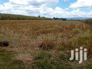 1 Acre for Sale in Ngecha Farm(Sobea) | Land & Plots For Sale for sale in Nakuru, Njoro