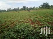 Land on Sale in South Nyanza | Land & Plots For Sale for sale in Homa Bay, Central Kasipul