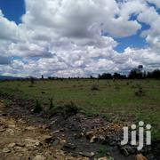 2 Acres For Sale | Land & Plots For Sale for sale in Kajiado, Ongata Rongai