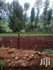 Plot For Sale | Land & Plots For Sale for sale in Kiambu, Nyadhuna