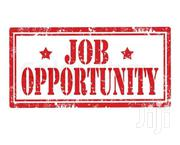 Job Opportunity | Accounting & Finance Jobs for sale in Embu, Central Ward