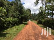 1/4 Plot Racecourse Behind Showground | Land & Plots For Sale for sale in Uasin Gishu, Racecourse