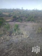 20 Acres Ngobit, Laikipia County | Land & Plots For Sale for sale in Nyeri, Ruring'U