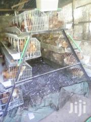 Hens Chickens Cages | Farm Machinery & Equipment for sale in Nairobi, Nairobi Central