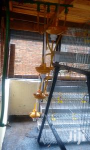 Modern Chicken Cages | Farm Machinery & Equipment for sale in Nairobi, Roysambu